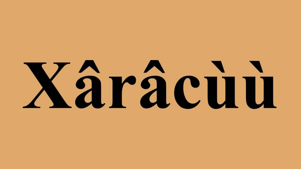 La langue Xârâcùù